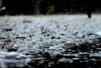 RainWiiN